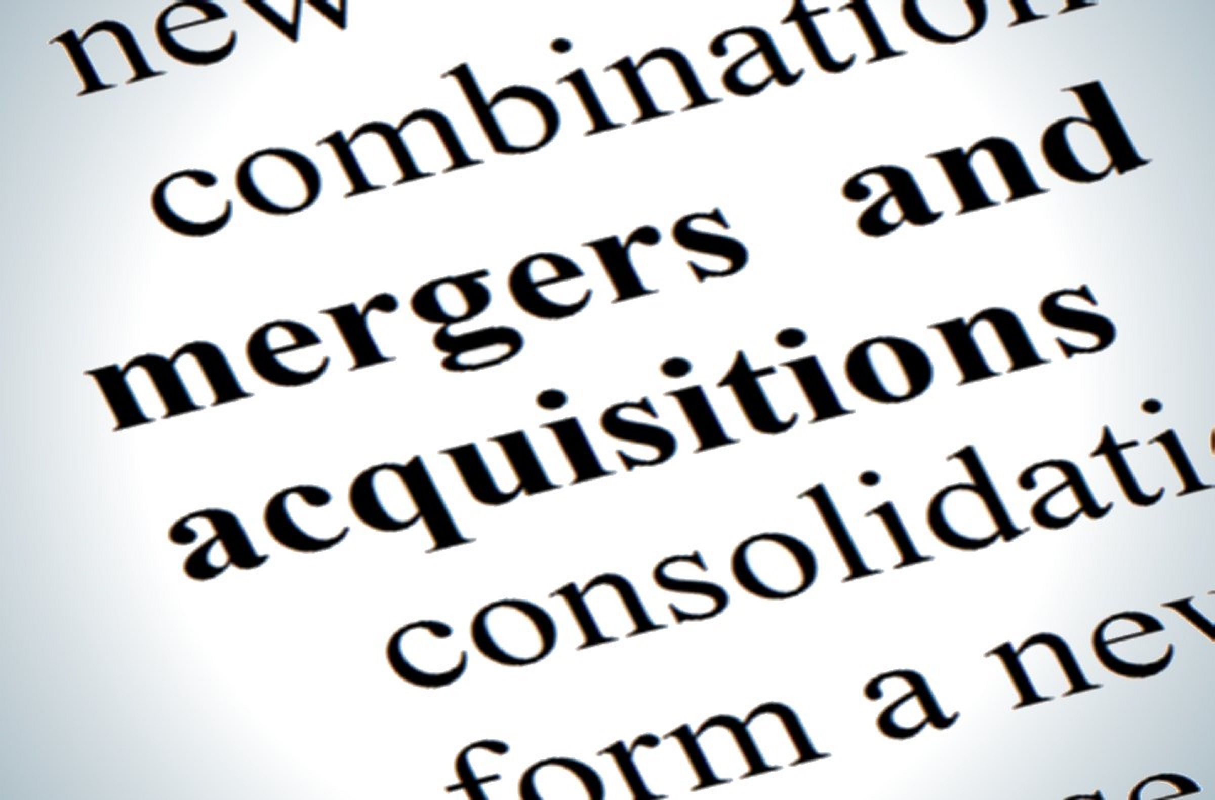 Mergers, Mergers and Acquisitions, Employee Assessment, HR Due Diligence, Workforce Integration